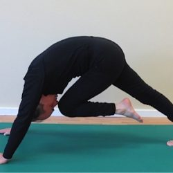 Back Pain help using Pilates